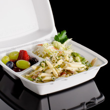 FOAM FOOD CONTAINER WITH COMPARTMENT