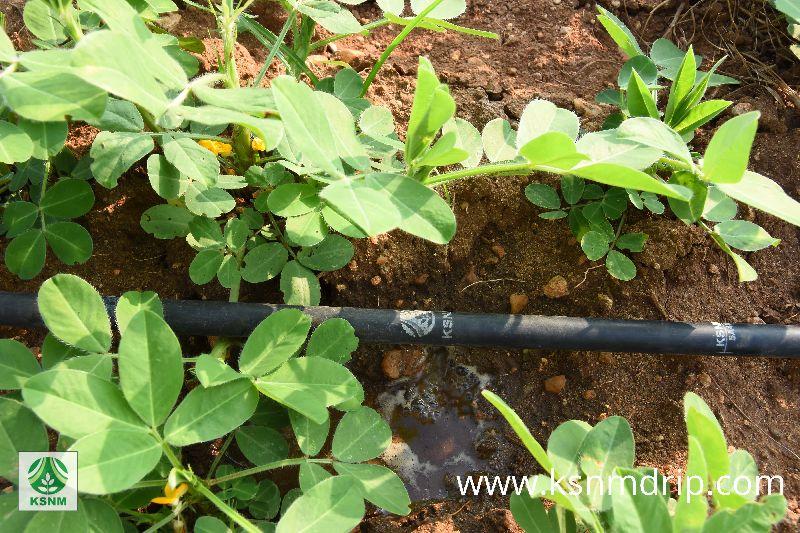 Farm Drip Irrigation System