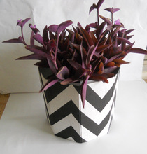 recycled cotton paper planter