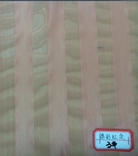polyester brushed mesh fabric