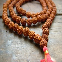 Rudraksha Mala Beads five Mukhi