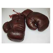 Popular Boxing Glove