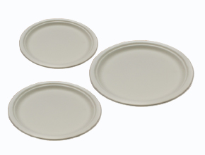 Bio-degradable Plate