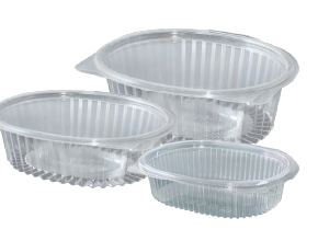 Hinged Lid Oval Salad Clear Container