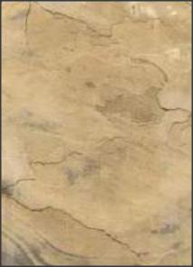 Gold Natural Slate Stone