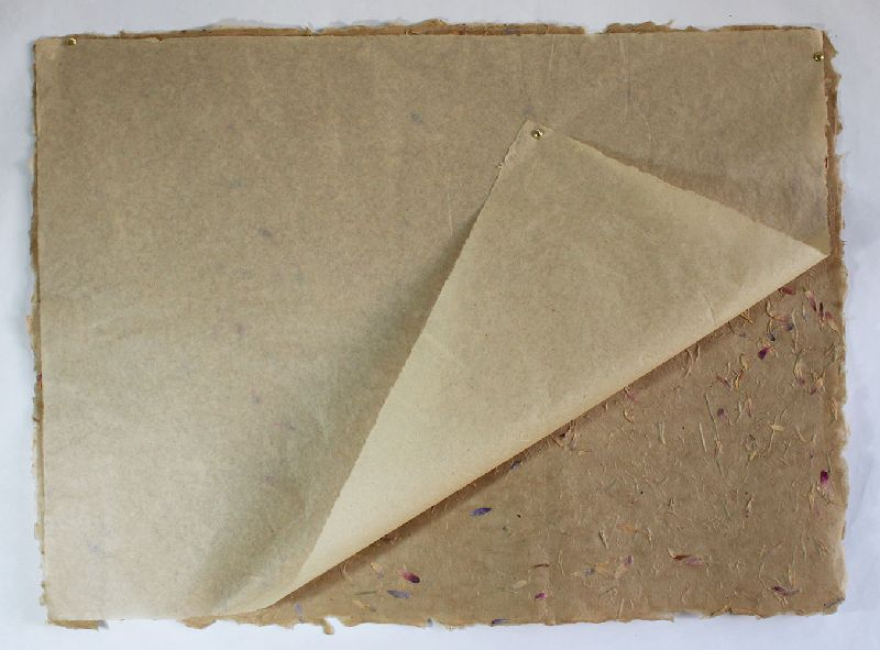 Tissue paper natural color sheets