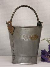 Metallic Flower Pot in Bucket