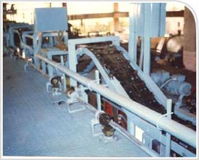 Screw Conveyors / Feeders