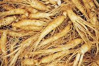 Ginseng Root Extract,CAS50647-08-0