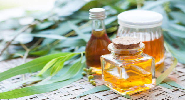 Eucalyptus oil with Remedies for joint pain