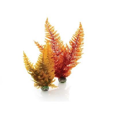 Autumn Fern Plant Pack Aquascaping / Decor
