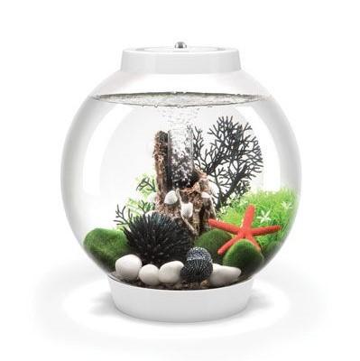 Baby biOrb Aquariums