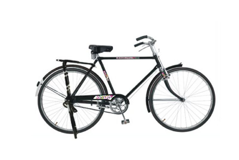 Buy ROYAL bicycle from Kapson Cycles, Ludhiana, India | ID - 4154924