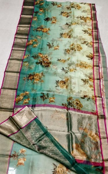 pure organza saree with digital prints and Kanchi boders