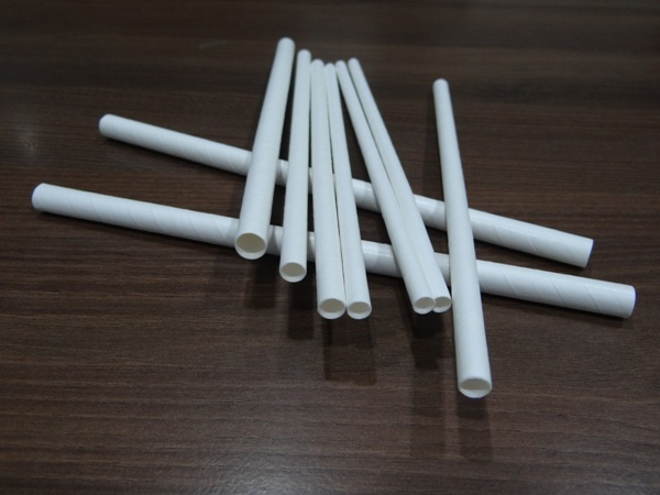 Eco Friendly Paper Straws Manufacturer in Surat Gujarat India by Eco