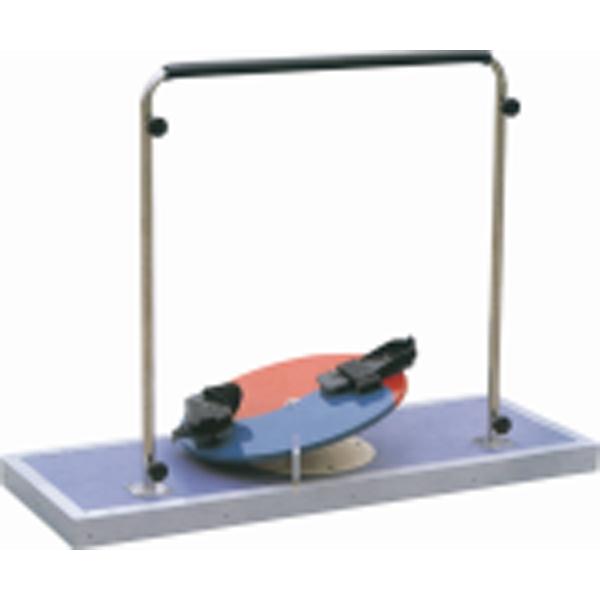 Coxa Rotation Training Device