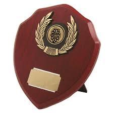 Designer School Wooden Trophy