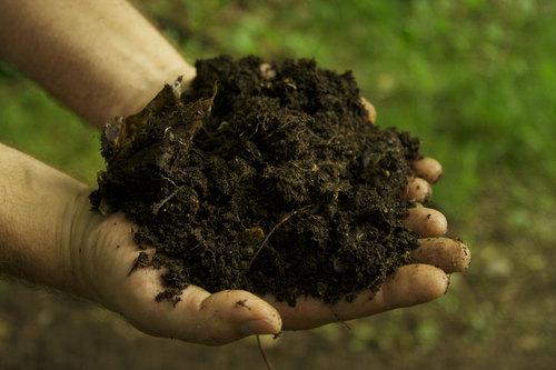Bio NPK Fertilizer