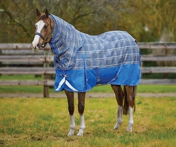 Horse Rugs From East West Tanners