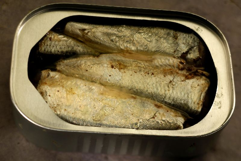 Canned Sardines Fish
