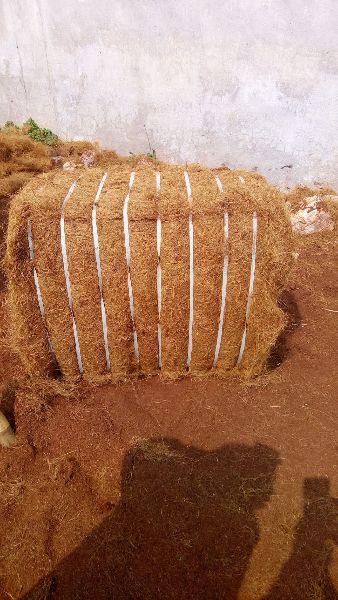 bristle coir fibre (SFC/CF/001)