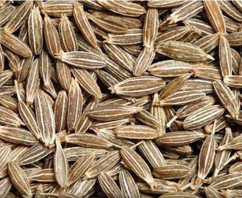Raw Cumin Seeds