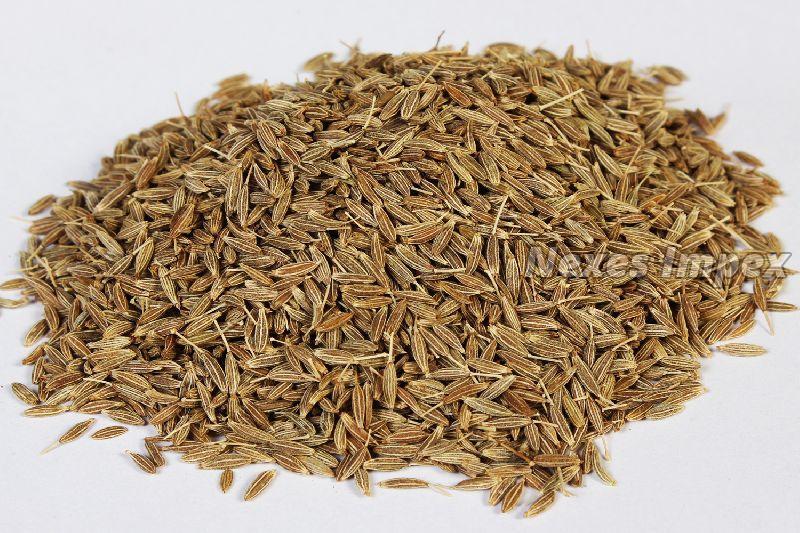 Dried Cumin Seeds