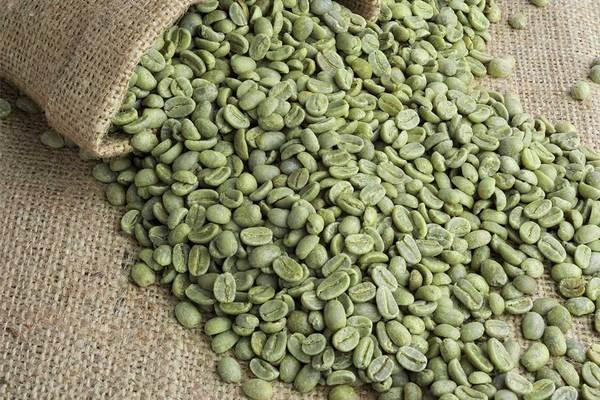 Arabic Coffee and Robusta coffee beans (g2378089)