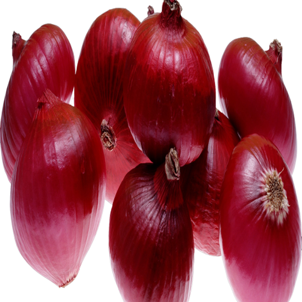 Red Onion (07031010)