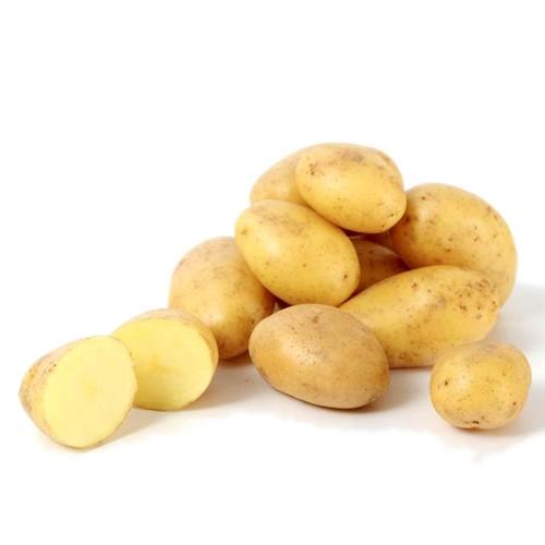 Fresh Baby Potato