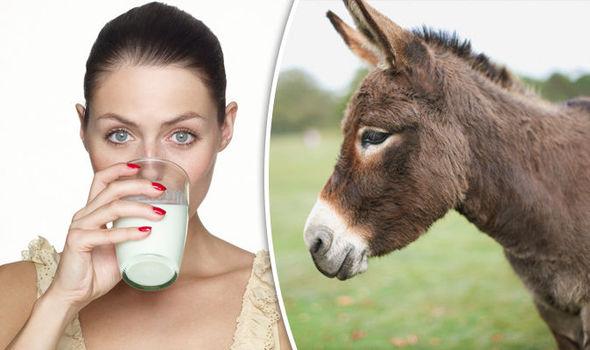 Donkey Milk