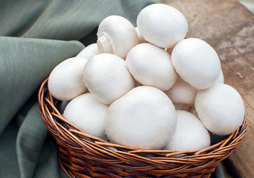 Premium Fresh Chemical Free White Button Mushroom