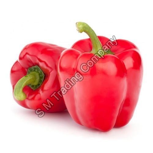 Fresh Red Capsicum