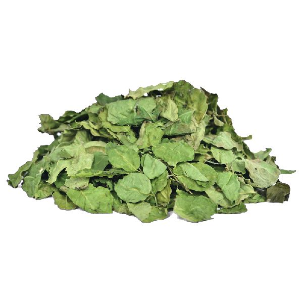 Dried Moringa Leaf