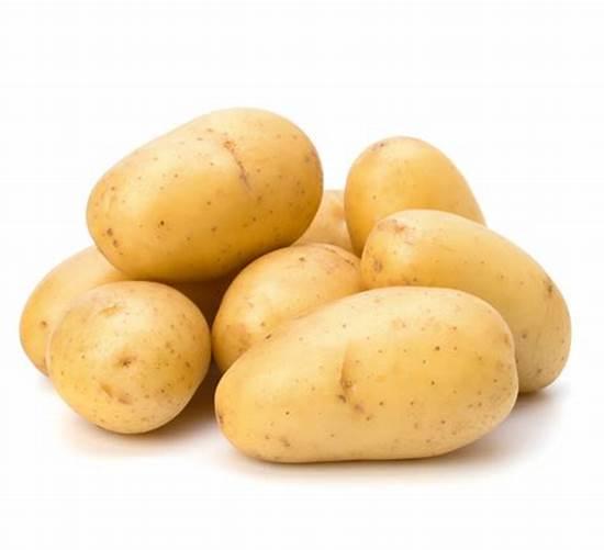 Fresh Large Potato