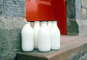 Fresh Donkey Milk