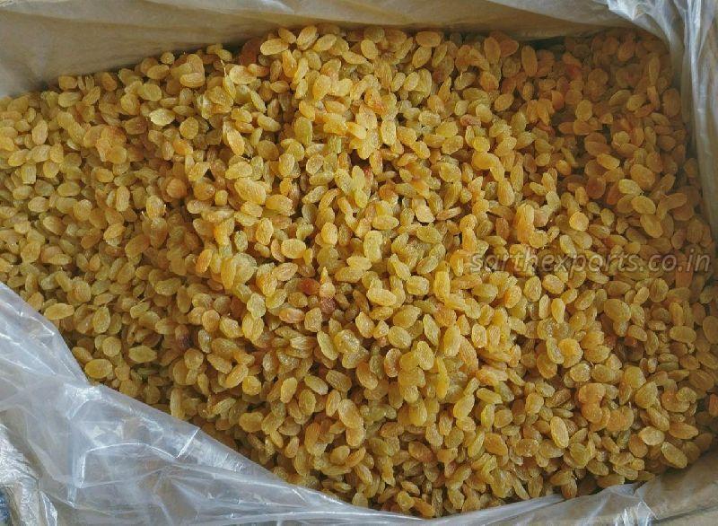 Golden Yellow Raisins (8062010)