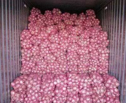 Fresh Bellary Onion