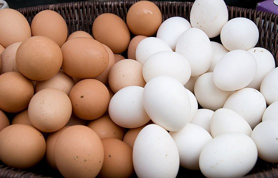 Fresh White and Brown Chicken Egg (8888)