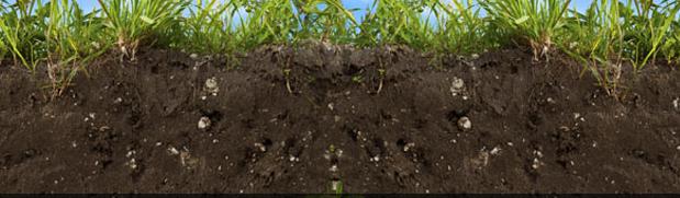 soil amendments