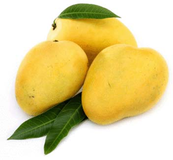Fresh Baneshan Mango
