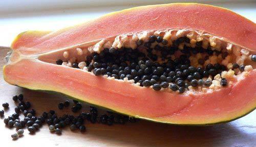 Fresh Pusa Majesty Papaya