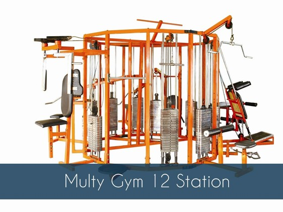 Multi home gym equipment manufacturer in maharashtra india