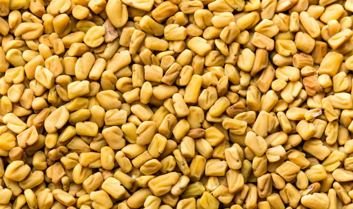 Buy Top Quality Cheap Fenugreek seeds, indian spices for