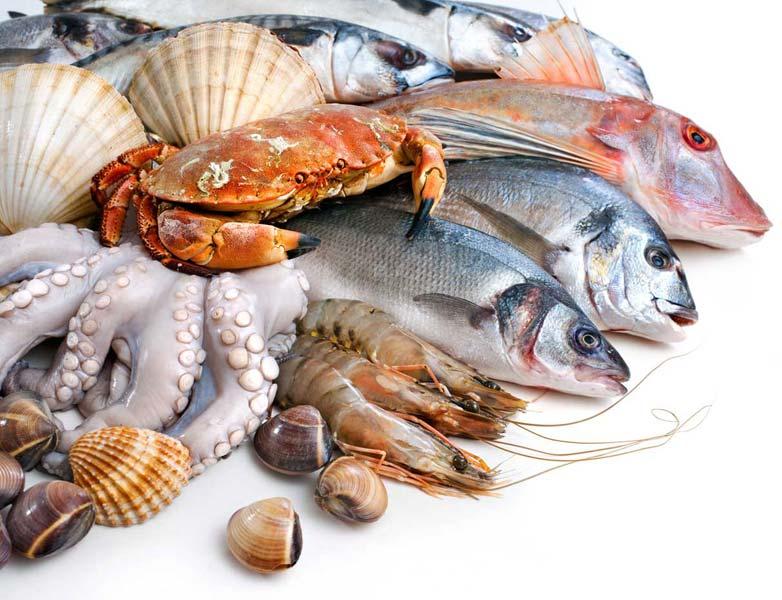 Aneka Ikan Hasil Laut