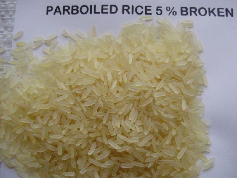 ARROZ BRASILEIRO DE GRÃOS LONGOS 5% QUEBRADO Compre arroz BRASILEIRO DE GRÃOS LONGOS