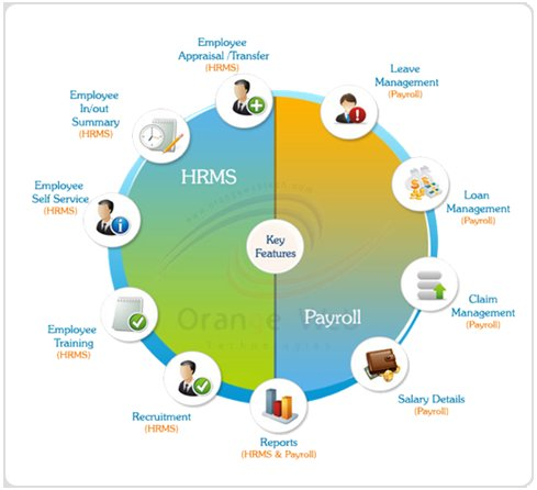 Human Resource Management System Software Wholesale