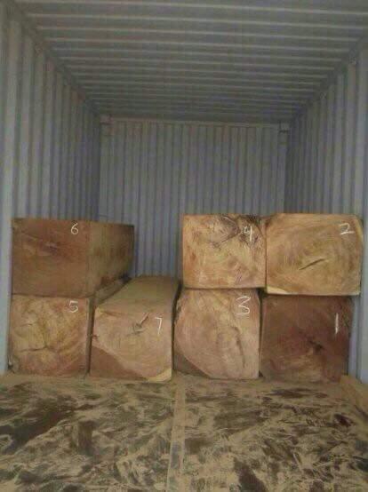 Doussie Wood Lumbers