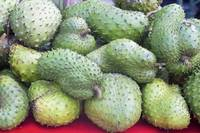 Graviola Fruits (100% Natural Graviola Fruits, Graviola S)