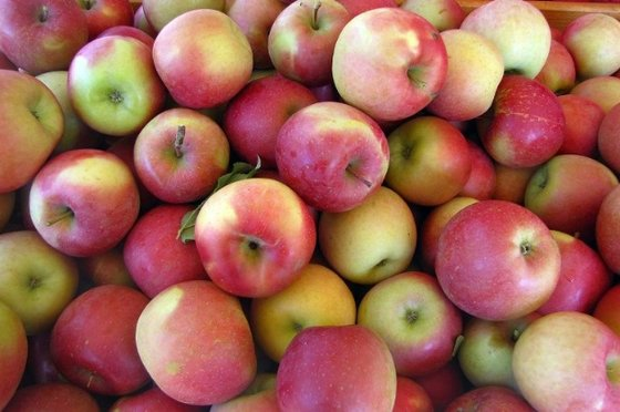 royal gala apples (apple)